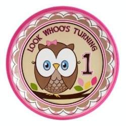 Owl turning 1 Pink Dinner Plates