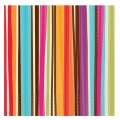 Stripe Style Beverage Napkin ~ Orders Taken