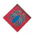 Spiderman Napkins Lunch (16)