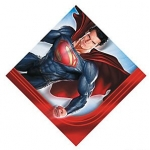 Superman Banner HUGE 260cm long